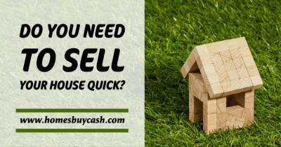 Local real estate investor